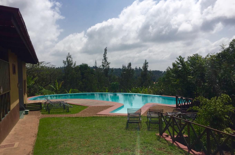 Pool and garden Ambureni Coffee Lodge