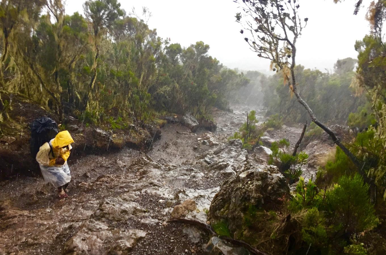 Starker Regenfall während der Wanderung auf der Machame Route