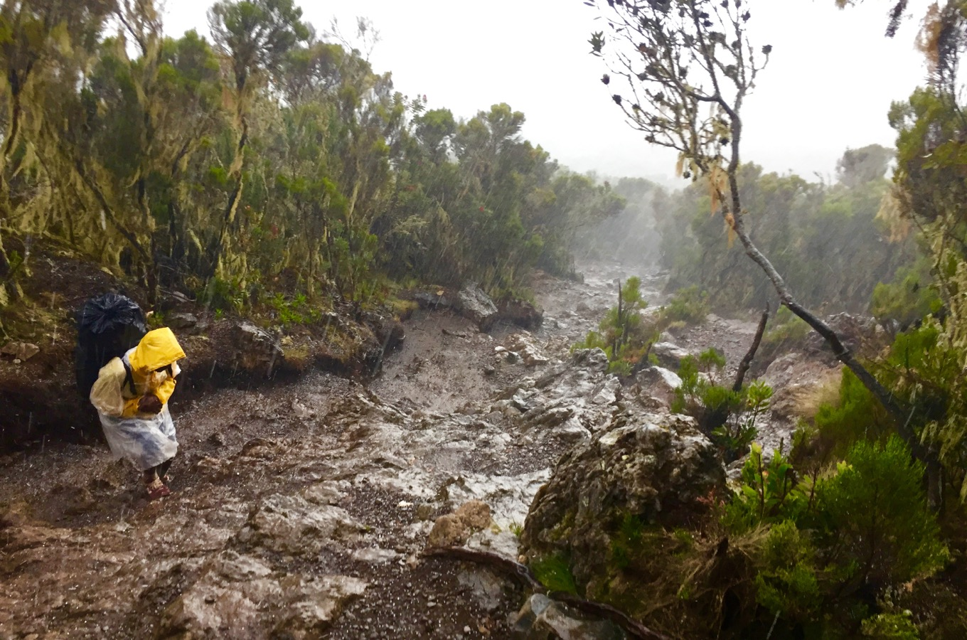 Heavy rainfall during hike along Machame Route