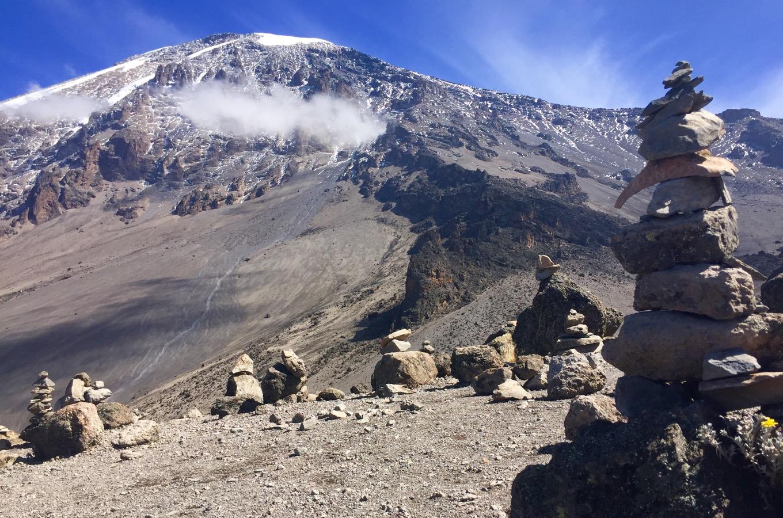 Vegetationszonen Kilimandscharo Steinwüste