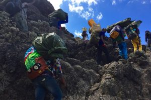 Aufstieg an der Barranco Wall des Kilimandscharos