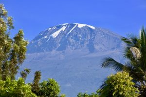 View to Mount Kilimanjaro from rain forest