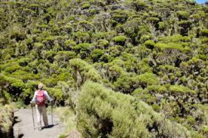 Abstieg vom Mount Meru