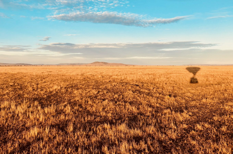 Blick in die Serengeti, Tansania
