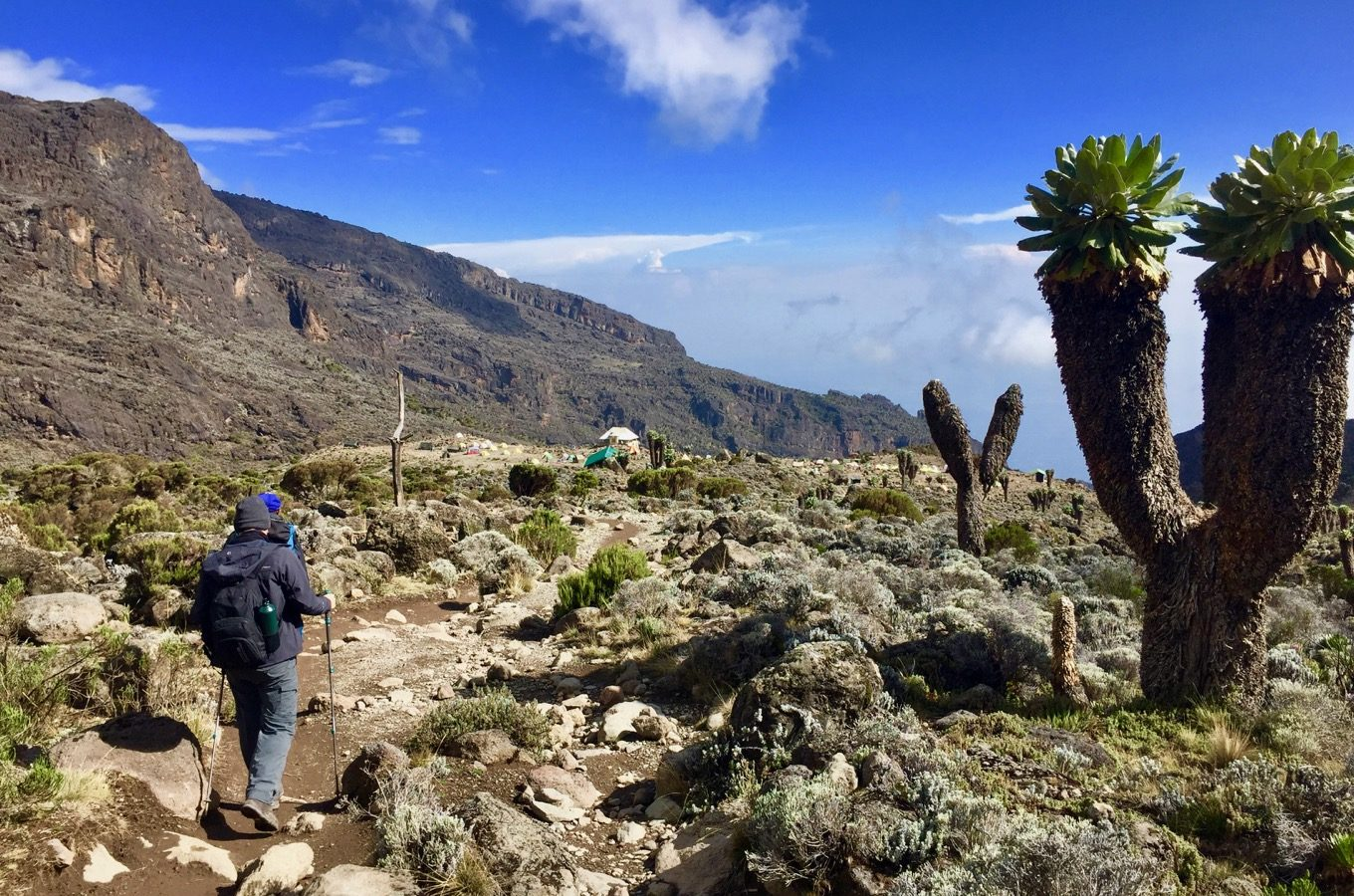 View into the country from the Machame Route