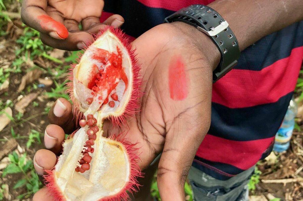Wir entdecken exotische Früchte und Gewürze auf einer Spicy Tours auf Sansibar