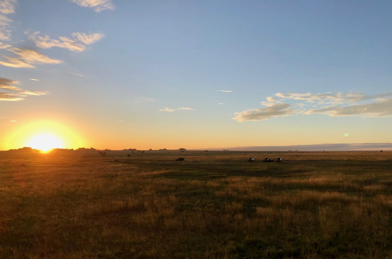 Lever du soleil sur le Serengeti