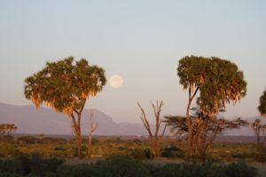 lever du soleil au samburu