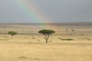 rainbow over maasai mara Kenya